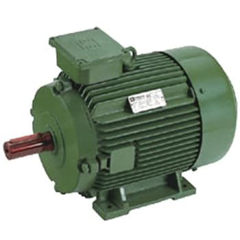 Energy Efficient Induction Motors-Three Phase Squirrel Cage